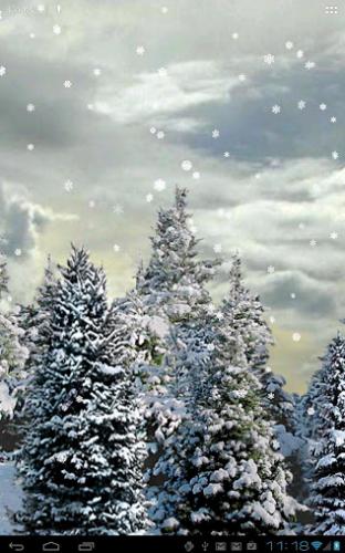 Schermata 2012-12-13 alle 19.18.03