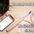 Recensione Oclean SE (Xiaomi) : Lo spazzolino SMART con motore sonico, bluetooth e app!